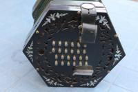 concertina_3.JPG