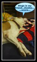 DogSummertimeDirge.jpg