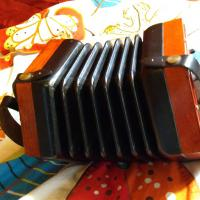 concertina side view.jpg