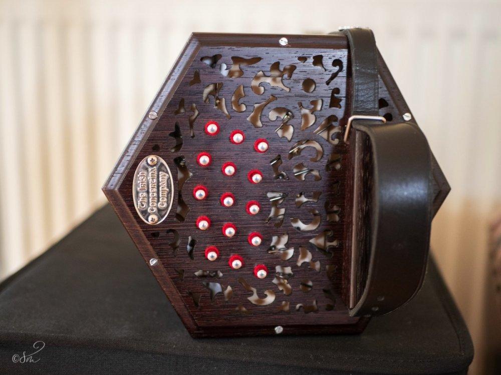 concertina-2.jpg
