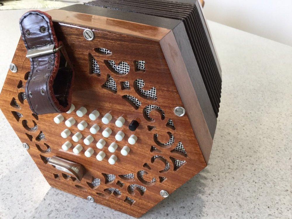 Helen's concertina 1.jpeg