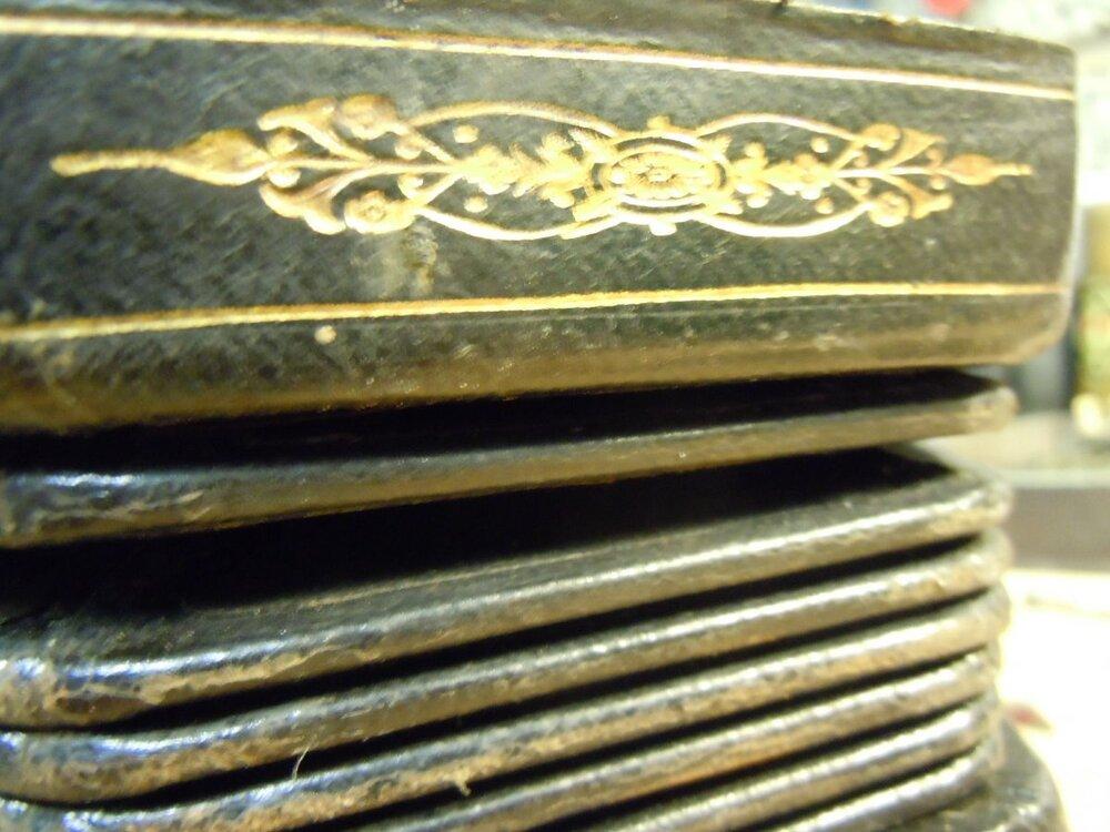 Bellows gilding close-up.jpg